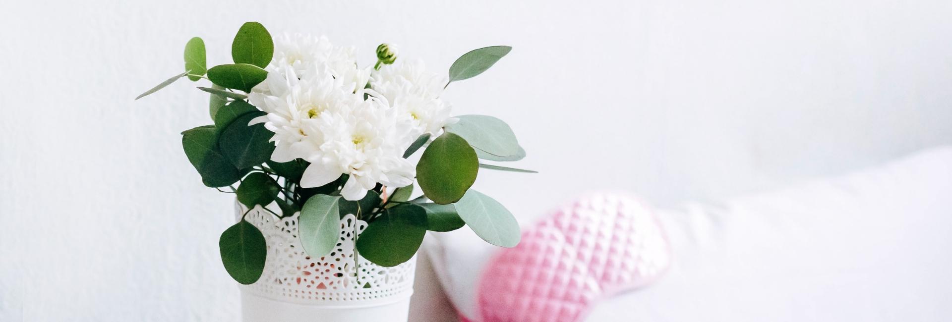 Cáncer de mama: artículos imprescindibles mastectomía